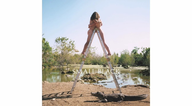 """Listen to the new album from Small Black """"Limits of Desire"""""""